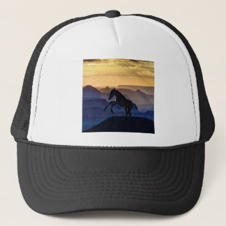 Rearing baby horse and canyons trucker hat