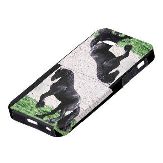 Rearing Friesian iPhone SE/5/5s Case