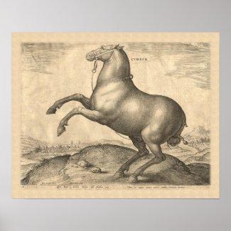 Rearing Horse Antique Renaissance Engraving