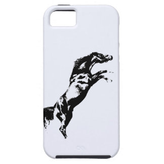 Rearing Horse iPhone 5 Cases