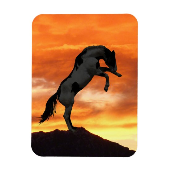 Rearing Horse Magnets
