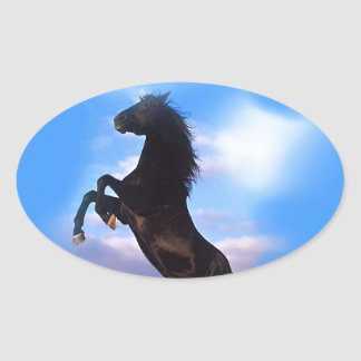 Rearing Horse Oval Sticker