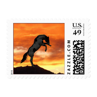 Rearing Horse Postage Stamps