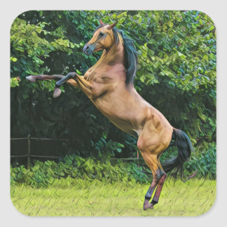Rearing Horse Square Sticker