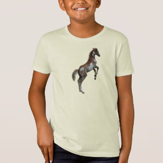 Rearing Pinto Pony Horse Animal-lover's Gift T-Shirt