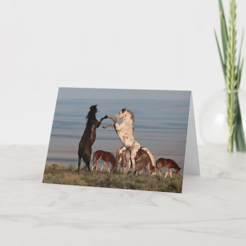 Rearing Stallions Greeting Card