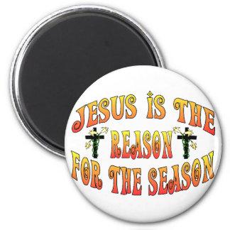 Reason For Season Magnet