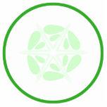 Rebanada de pepino. Verde y blanco Esculturas Fotográficas
