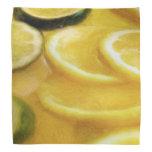 Rebanadas de la fruta cítrica bandanas
