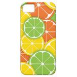 Rebanadas redondas jugosas del naranja de la cal d iPhone 5 carcasa
