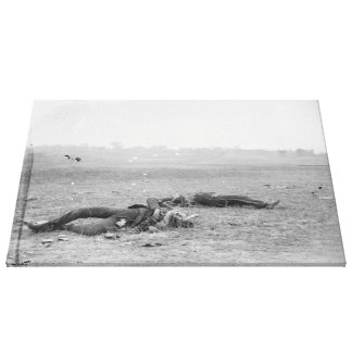 Rebel soldiers as they fell near Burnside Bridge Canvas Print