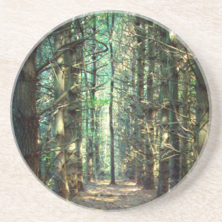 Rebellious Tree Photo Coaster