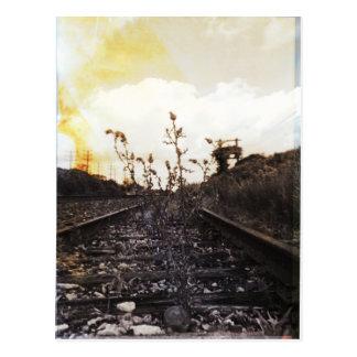 Rebirth Between the Rails Postcard
