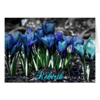 Rebirth of Aqua Blue Crocus Blooms Card