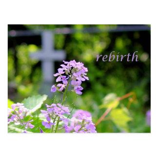 rebirth postcard