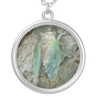 Rebirth Silver Plated Necklace