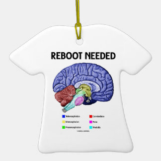 Reboot Needed (Anatomical Brain Humor) Ornament