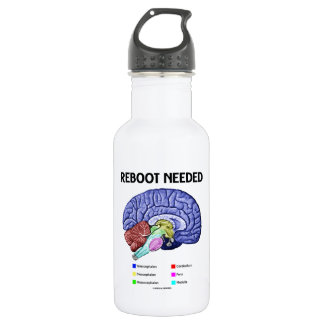 Reboot Needed (Anatomical Brain Humor) 18oz Water Bottle