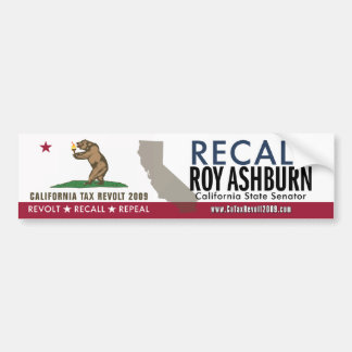 Recall Roy Ashburn Bumper Sticker