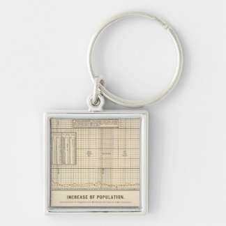 Receipts and expenditures per capita Silver-Colored square keychain