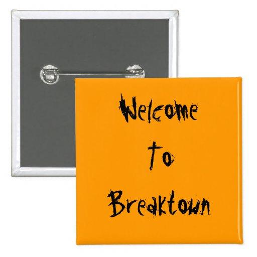 Recepción a Breaktown Pins