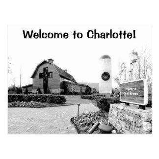 ¡Recepción a Charlotte! Postal