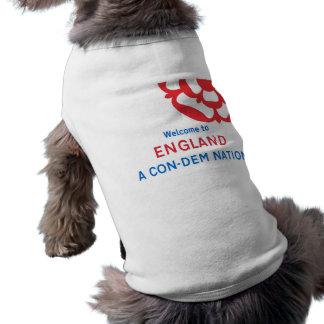 Recepción a Inglaterra Una nación Estafa-Dem Camisetas Mascota