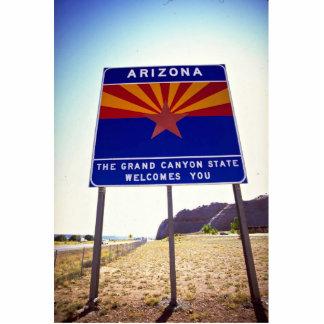 Recepción a la muestra de Arizona en Lupton, Fotoescultura Vertical
