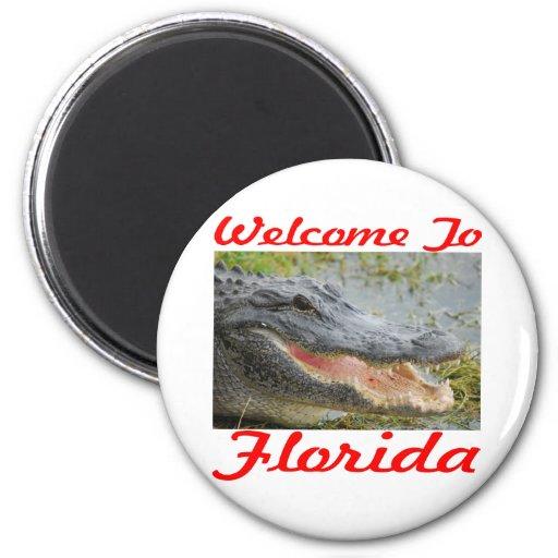 Recepción al cocodrilo de la Florida Imán De Frigorifico