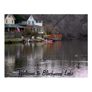Recepción al lago Blackwood Postales