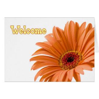 Recepción anaranjada del empleado de la flor a la tarjeta pequeña