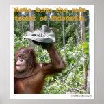 Recepción de la selva tropical del orangután impresiones