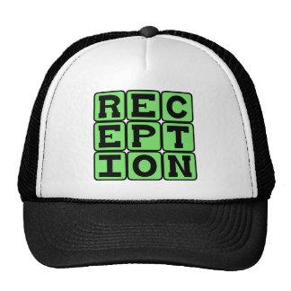 Reception, Football Stat Mesh Hats