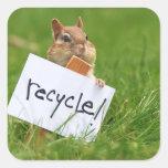 reciclaje de chipmunk calcomanías cuadradas