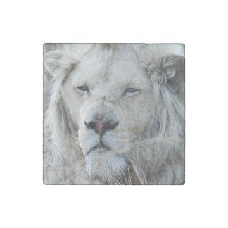 Reclinación blanca africana del león imán de piedra