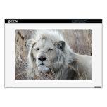 Reclinación blanca africana del león portátil skin