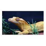Reclinación con cresta amarilla del Gecko Tarjetas De Visita