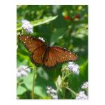 Reclinación de la mariposa postal