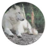 Reclinación de White Wolf Platos