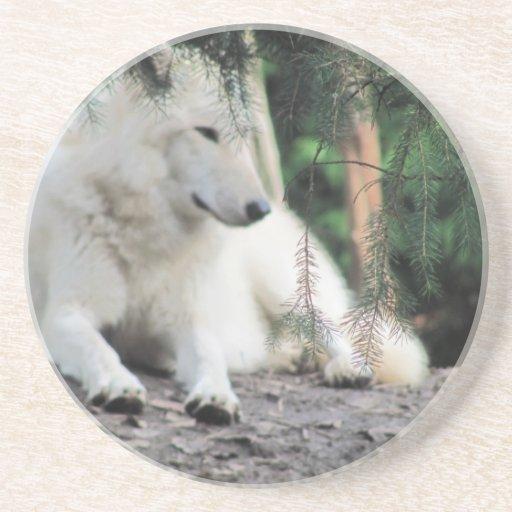 Reclinación de White Wolf Posavasos Manualidades