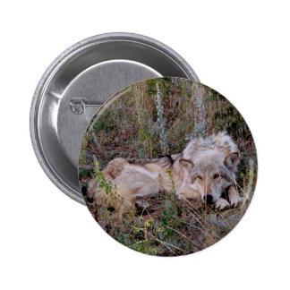 Reclinación del lobo pin redondo de 2 pulgadas