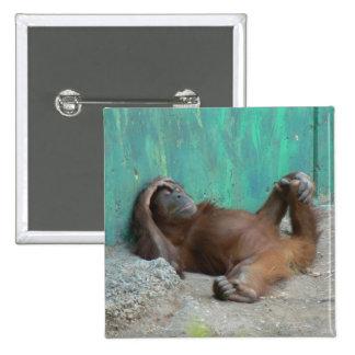 Reclinación del orangutang del bebé pin cuadrado