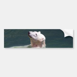 Reclinación del oso polar pegatina para auto