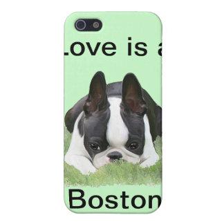 Reclinación del perrito del terrier de Boston iPhone 5 Carcasa