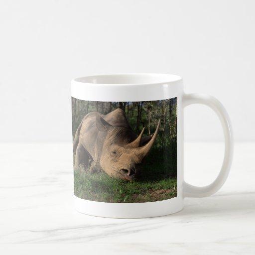 Reclinación del rinoceronte taza básica blanca