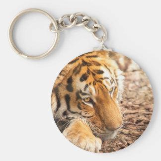 Reclinación del tigre llavero redondo tipo pin