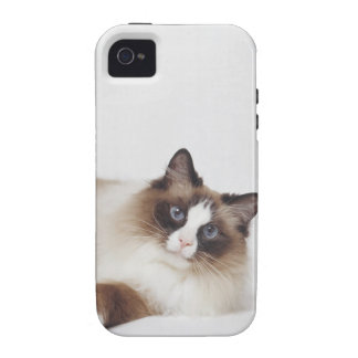 Reclining Cat Vibe iPhone 4 Case