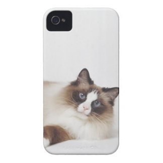 Reclining Cat iPhone 4 Covers