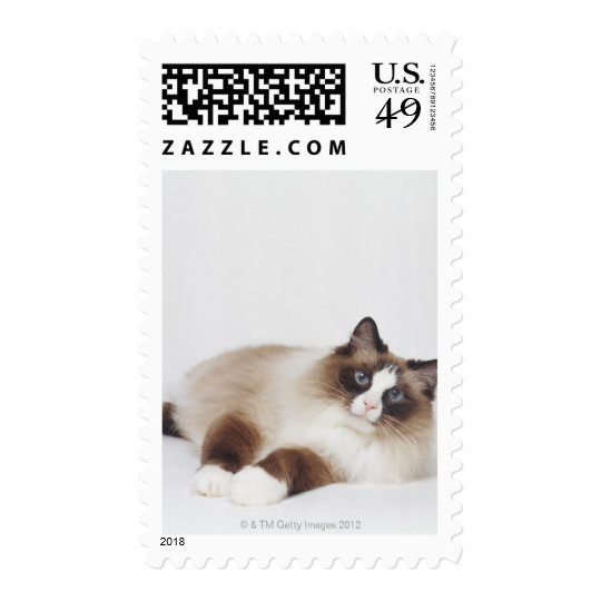 Reclining Cat Postage