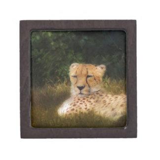 Reclining Cheetah at Fossil Rim Wildlife Center Keepsake Box